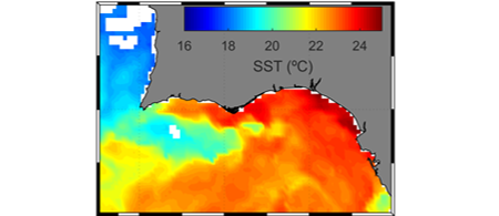 THE STRUCTURE OF INCIPIENT COASTAL COUNTER CURRENTS IN SOUTH PORTUGAL AS INDICATOR OF THEIR FORCING AGENTS