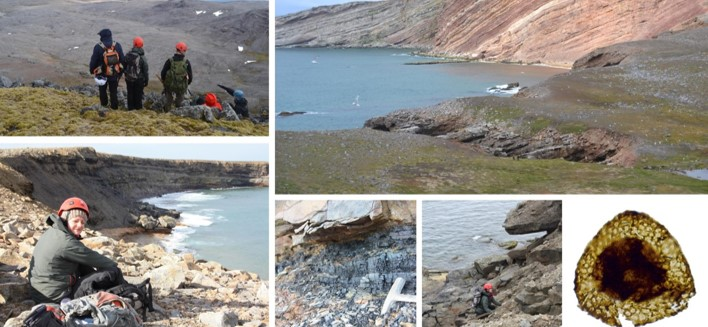 Palynostratigraphic reassessment of the Late Devonian of Bjørnøya, Svalbard